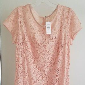 Ann Taylor Loft Elegant Pink Lace Dress NWT $98